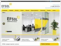 EFSOL (Эффективные решения НН)