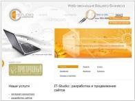 Интернет-агентство IT-Studio